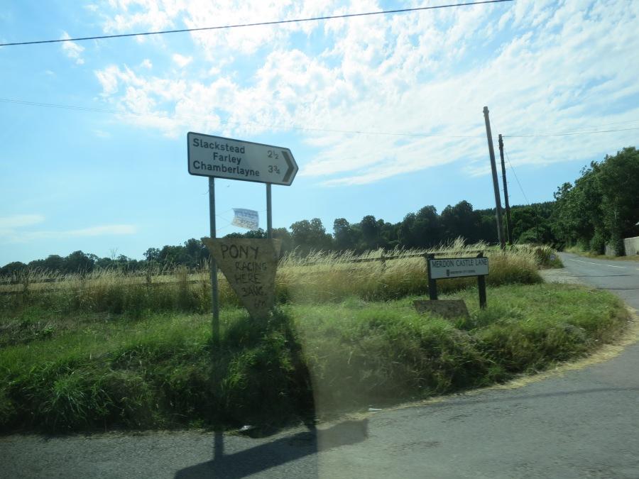 August 2013, Hillier Garden, 144