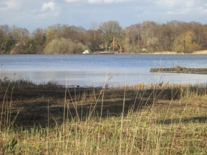 Dredging began again in the nature reserve - making sure the water could flow freely.